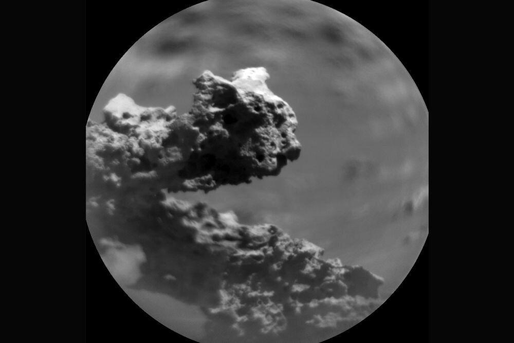 Кусок причудливой марсианской скалы большинство пользователей уже назвали окаменелой ящерицей.