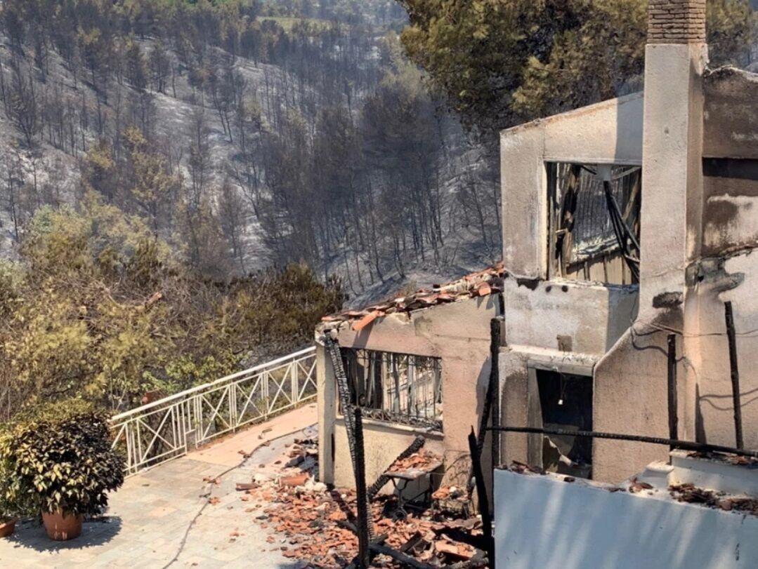 Сгоревший лес и дом.