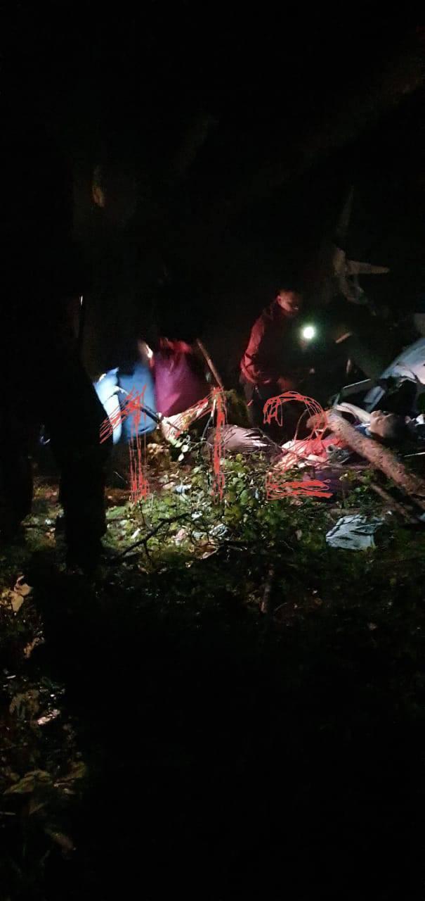 Самолет упал на деревья
