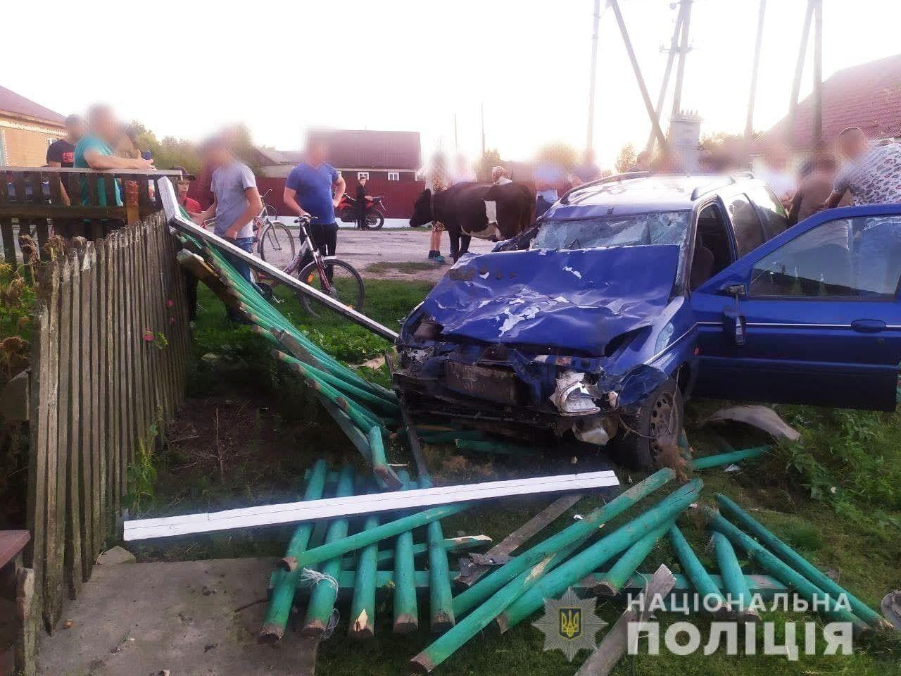 Водитель легковушки сбил сразу несколько коров и разбил деревянный забор.