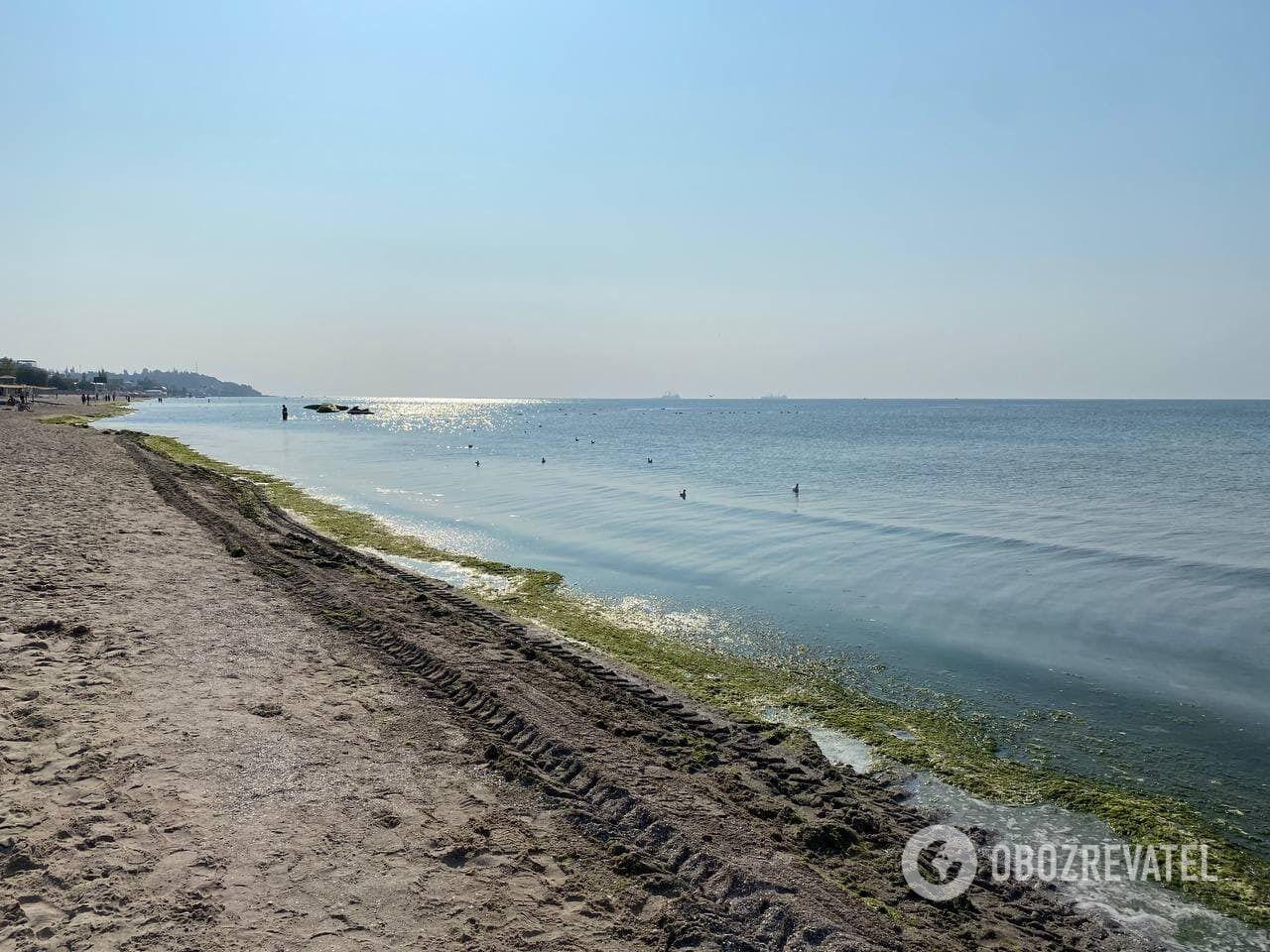 Как сейчас выглядит пляж Коблево