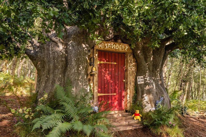 Вход в дом Винни Пуха