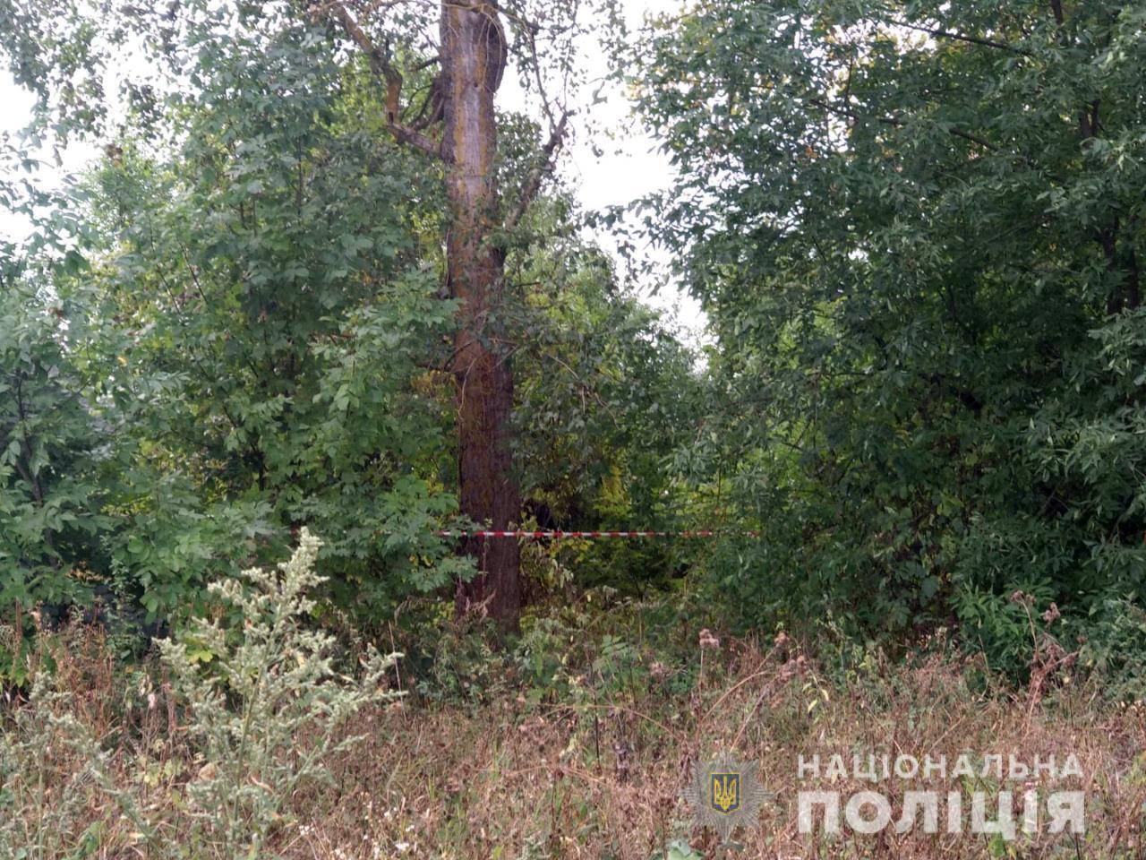 Лісосмуга, де вбили хлопчика