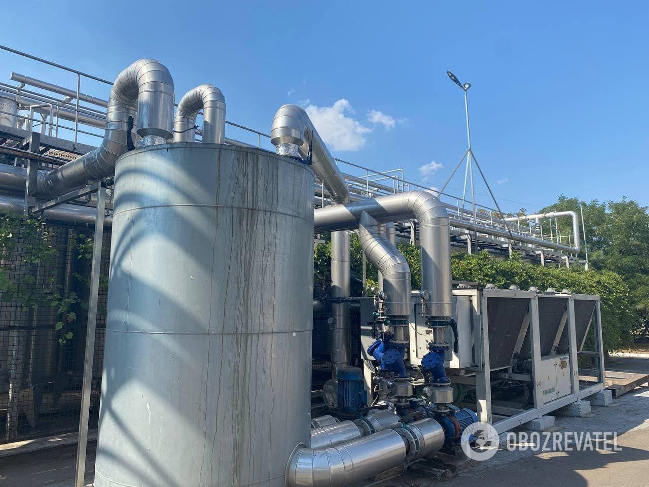 KOBLEVO перерабатывает за год 10 тысяч тонн винограда