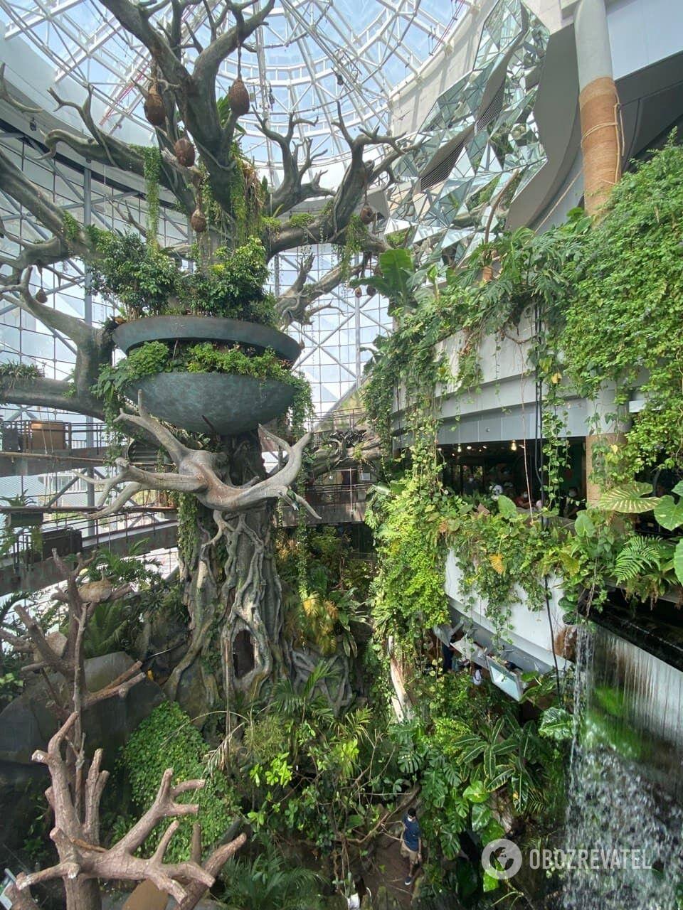 The Green Planet – рукотворная замкнутая экосистема, вместившая более 3000 видов экзотических растений, животных и птиц.