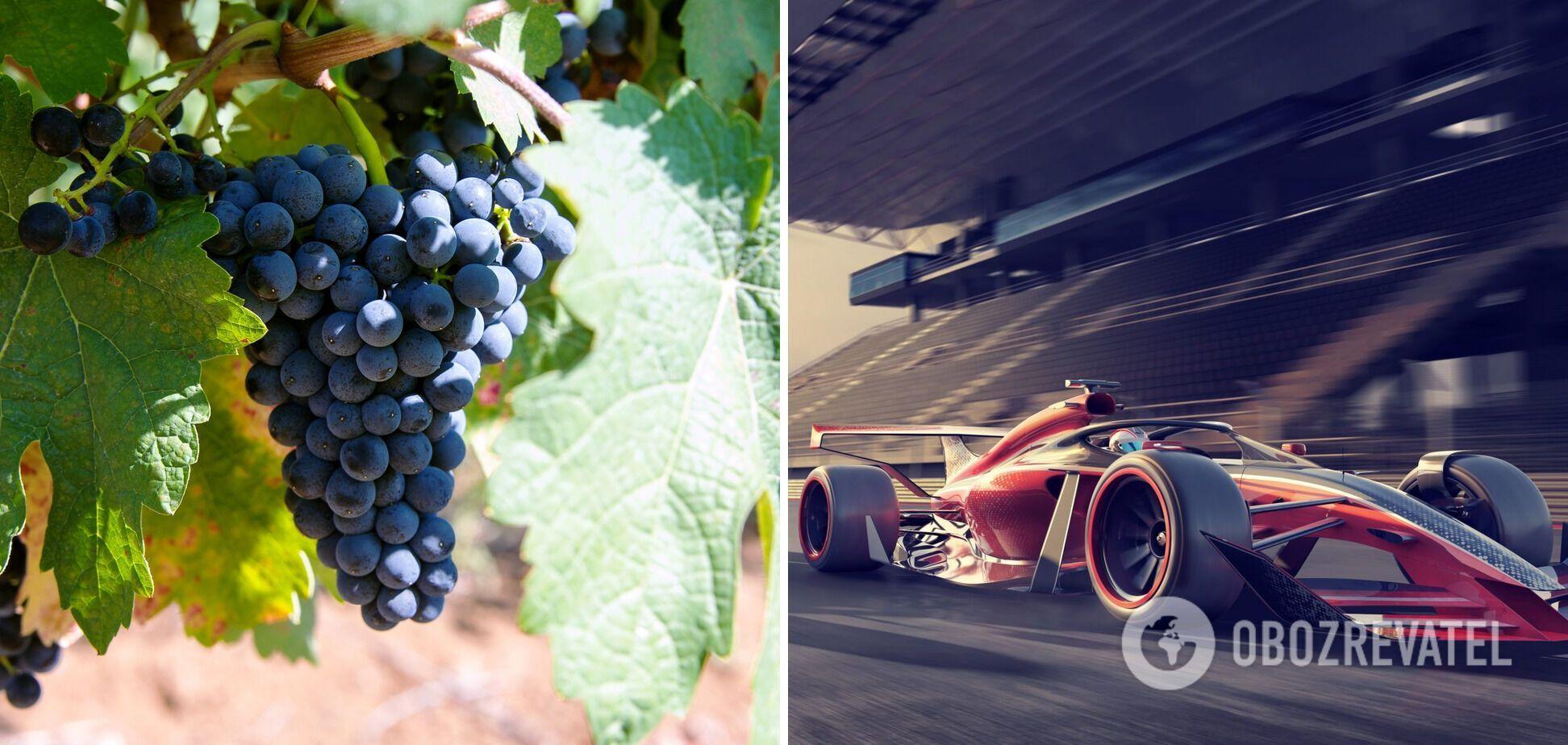 Виноградное топливо для спортивных машин