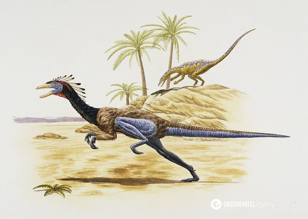 Ймовірне зображення динозавра Coelophysis bauri
