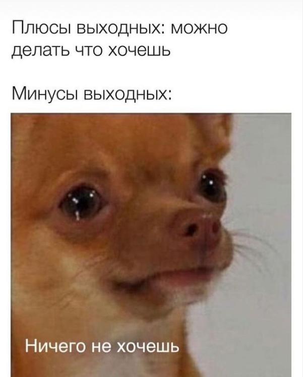 Мем о выходных