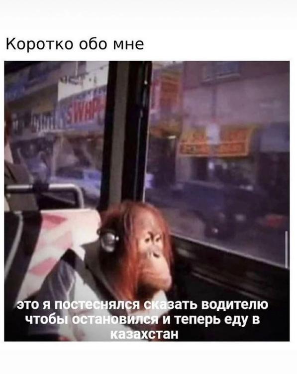 Мем о скромности