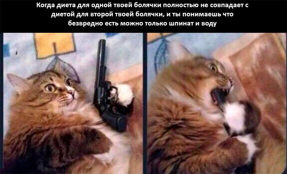 Мем о диетах