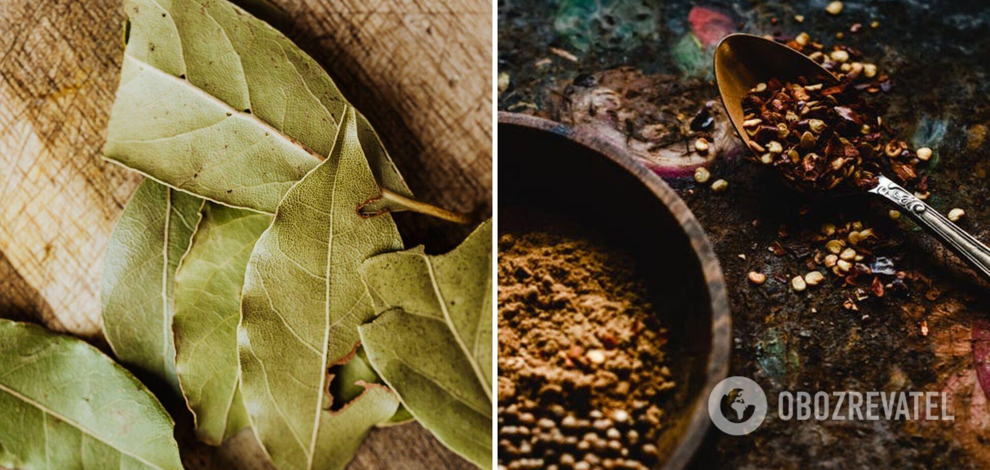 Специи – лавровый лист и кориандр