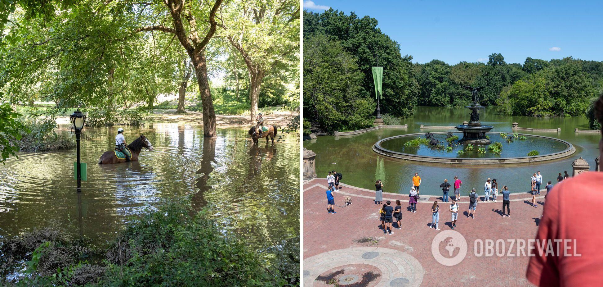 Результаты потопа в Центральном парке