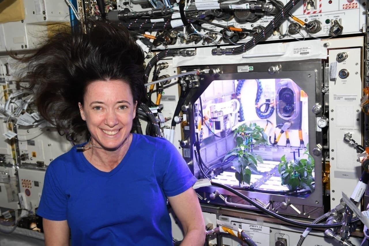 Астронавтка возле растений, которые выросли в космосе