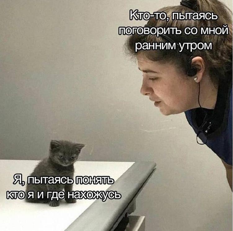 Мем про утро
