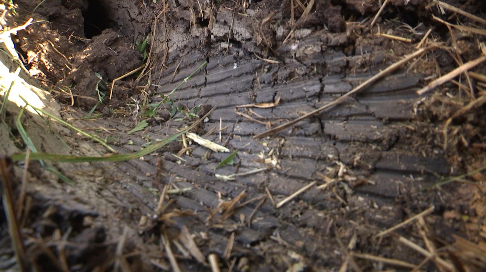 В земле четко видно желобки, оставленные ребристой поверхностью артснаряда
