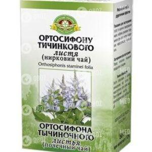 Ортосифона Тычиночного