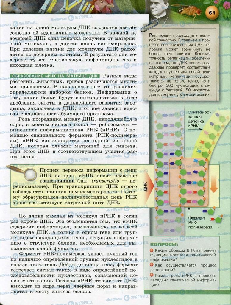 Підручники Біологія 10 клас сторінка  61