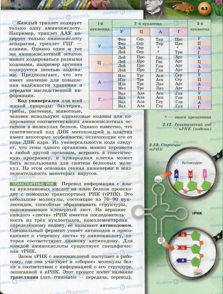 Підручники Біологія 10 клас сторінка  63