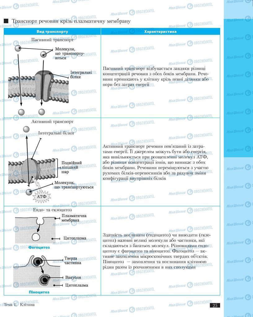 Підручники Біологія 11 клас сторінка 25
