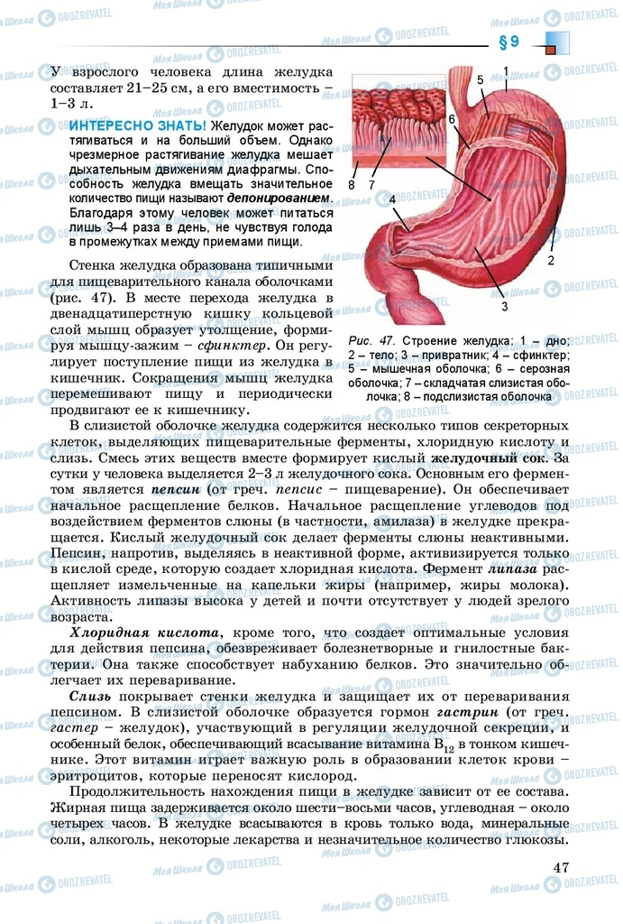 Учебники Биология 8 класс страница 47
