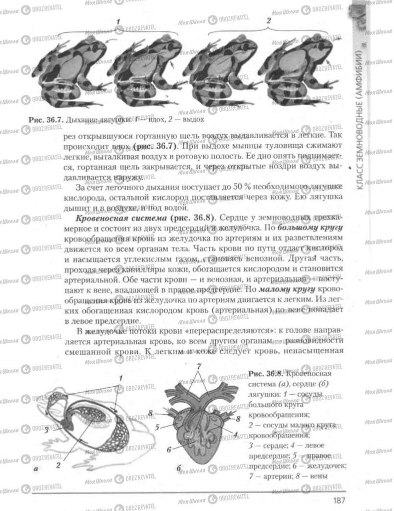 Підручники Біологія 8 клас сторінка 187