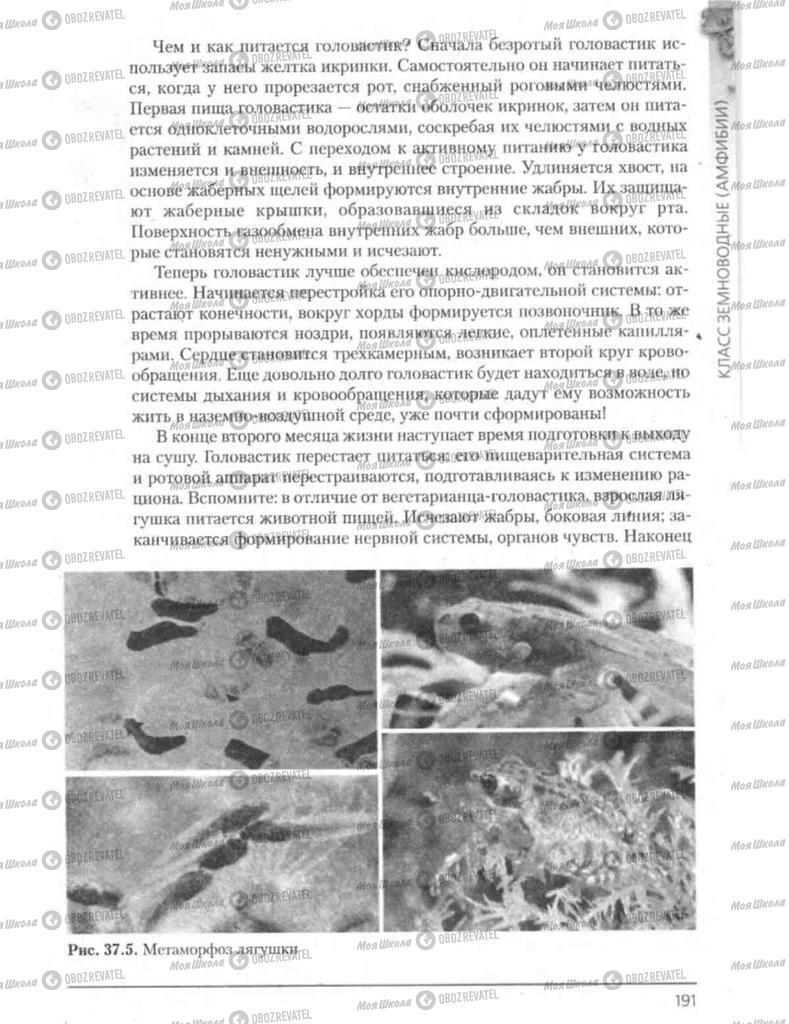 Підручники Біологія 8 клас сторінка 191