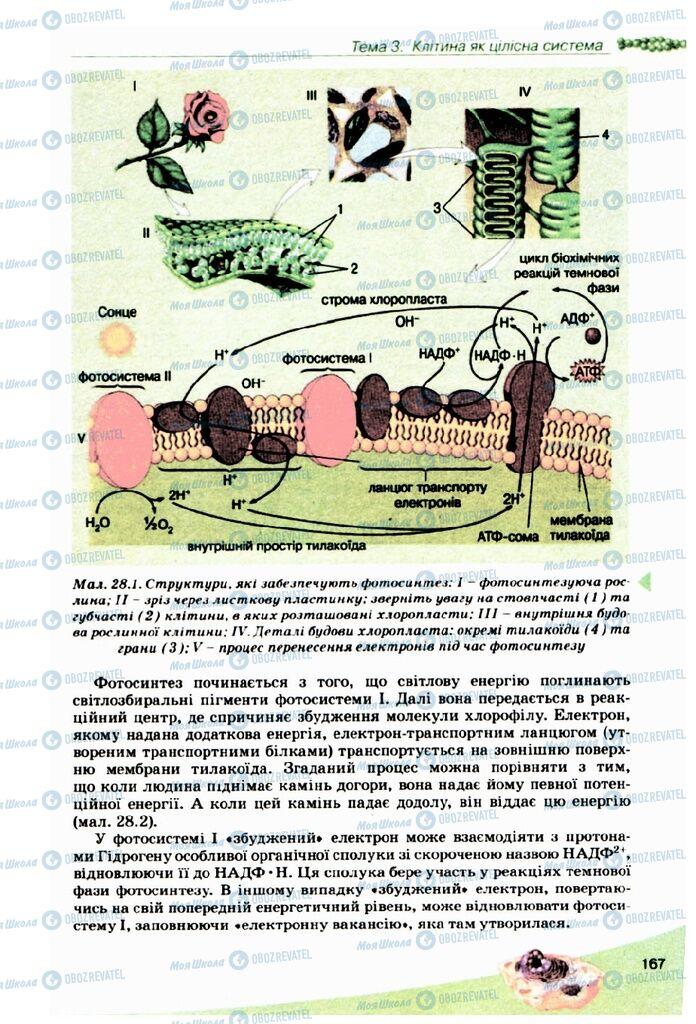 Підручники Біологія 10 клас сторінка 167