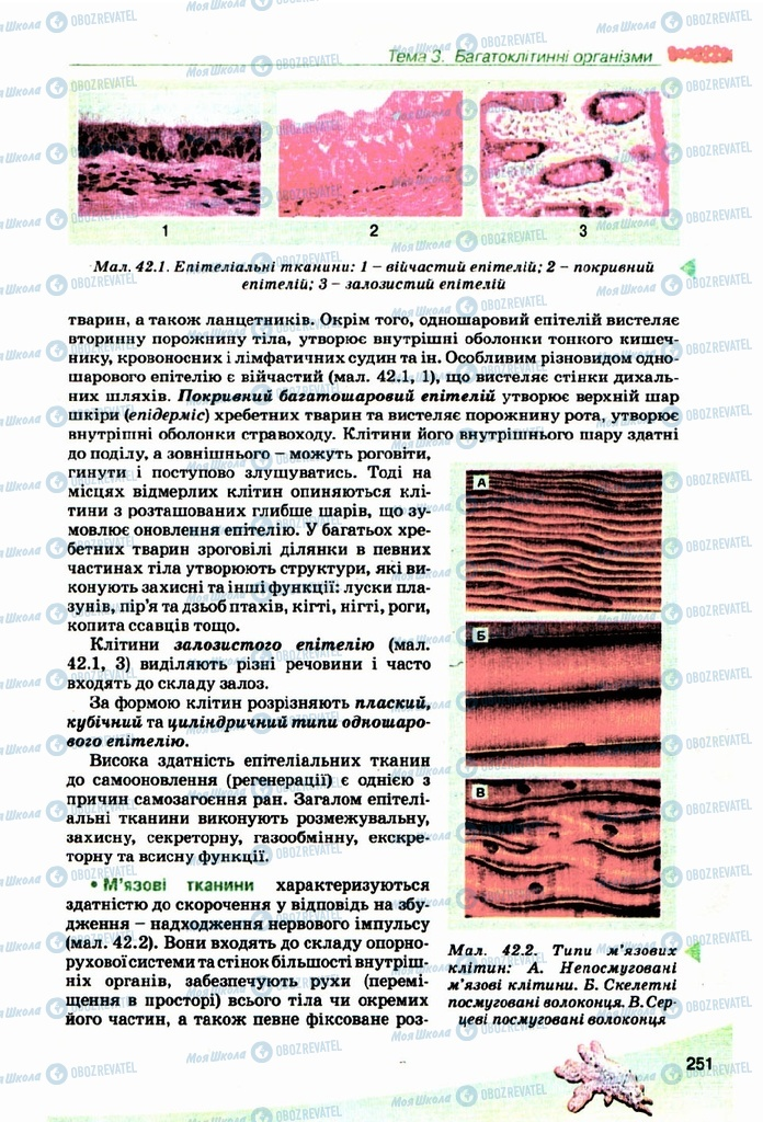 Учебники Биология 10 класс страница  251
