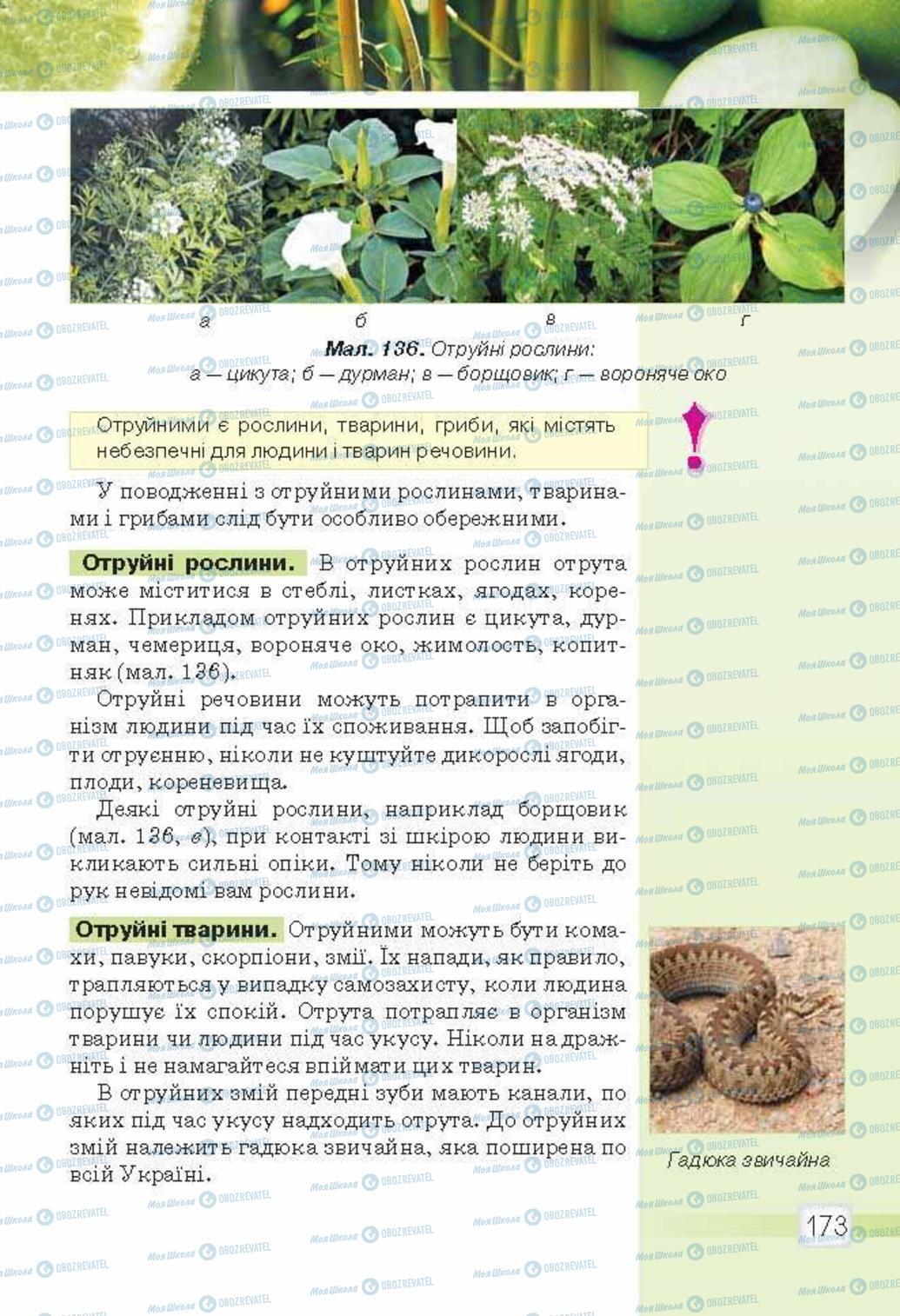 Підручники Природознавство 5 клас сторінка 173