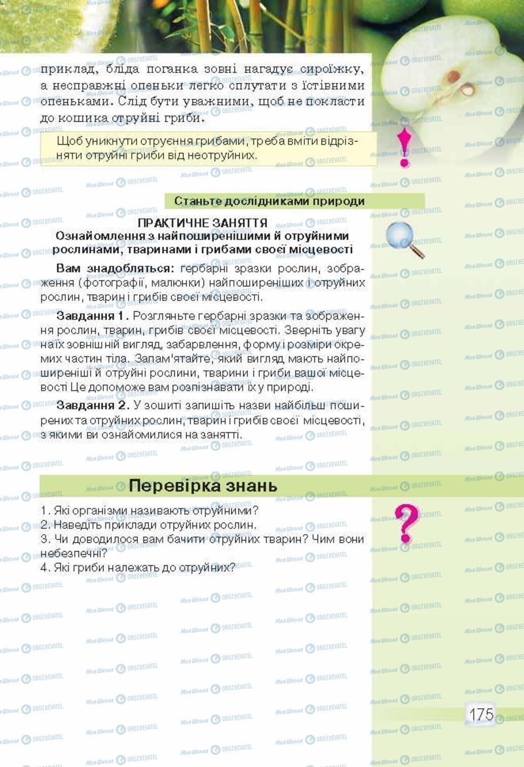 Підручники Природознавство 5 клас сторінка 175