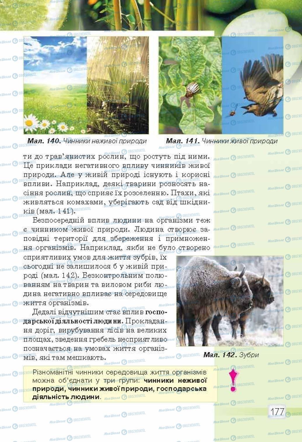 Підручники Природознавство 5 клас сторінка 177