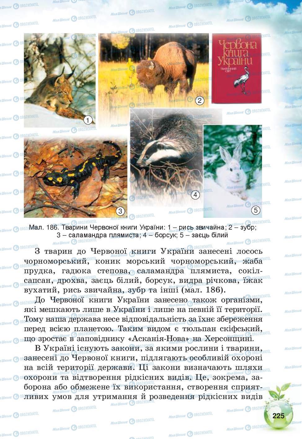 Учебники Природоведение 5 класс страница 225