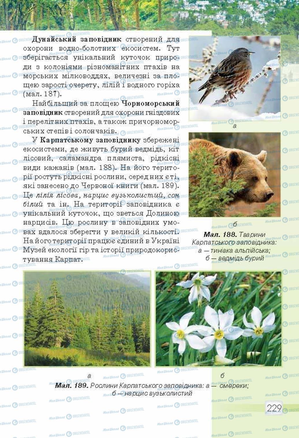 Учебники Природоведение 5 класс страница 229