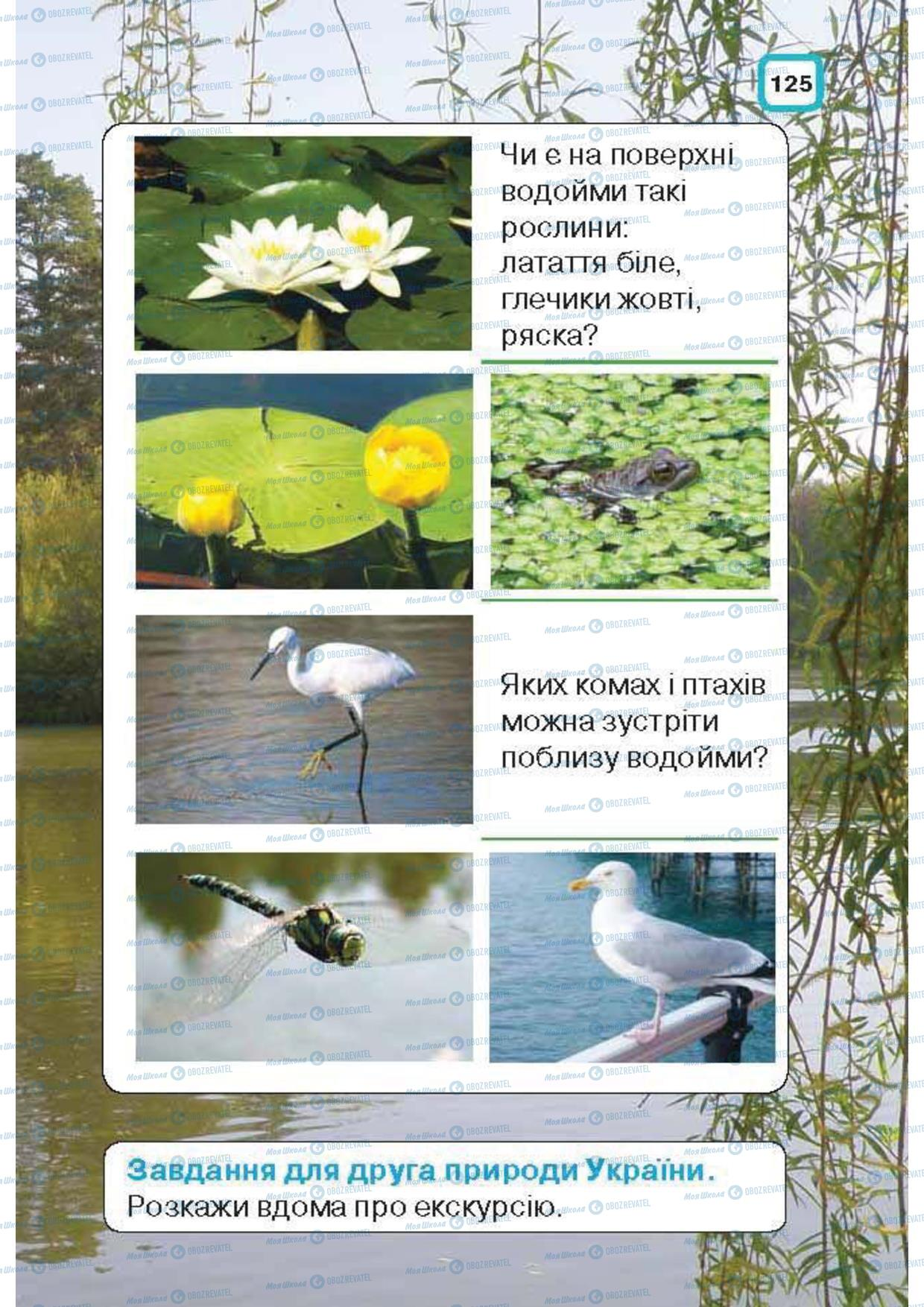 Підручники Природознавство 1 клас сторінка 125