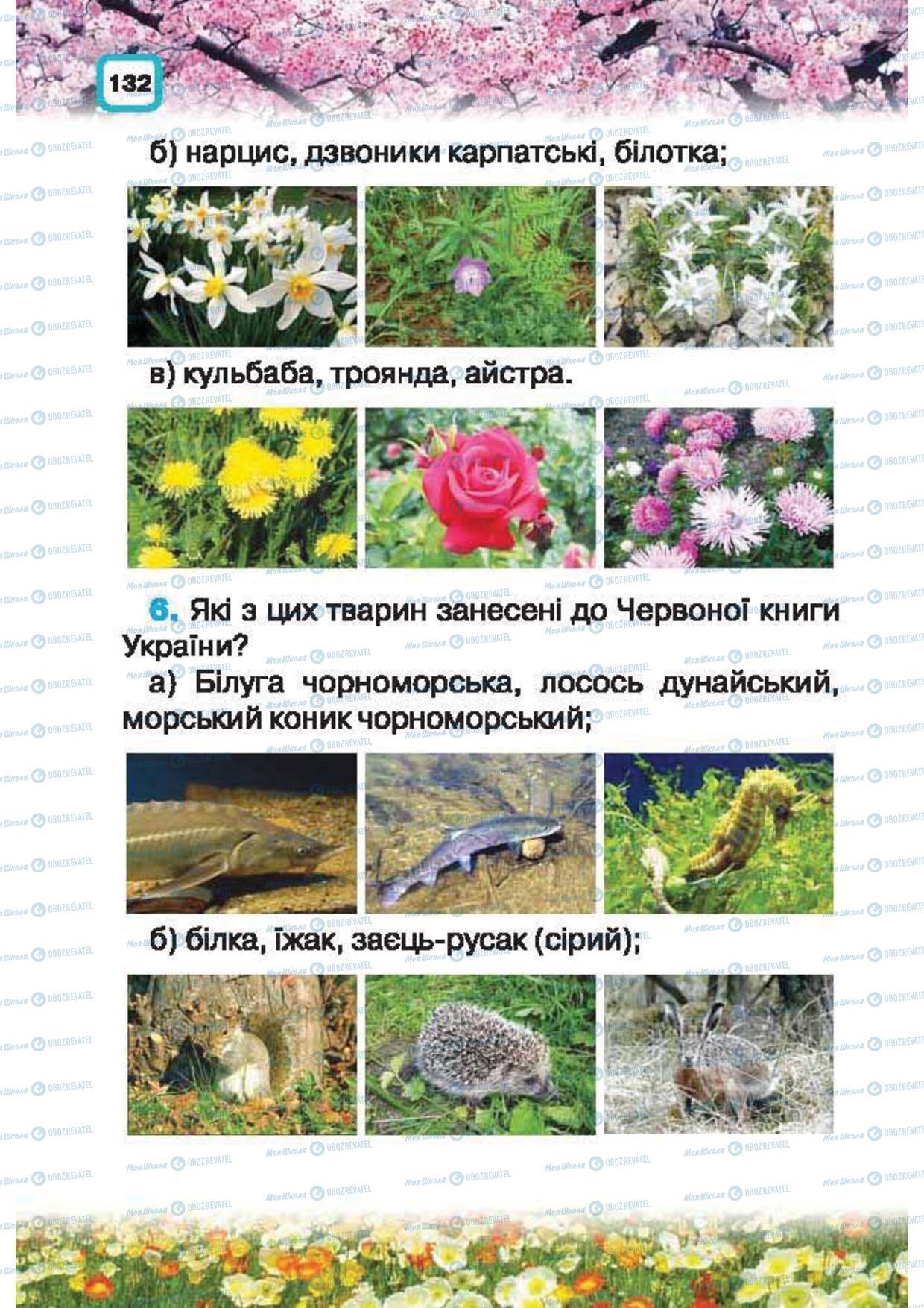 Підручники Природознавство 1 клас сторінка 132