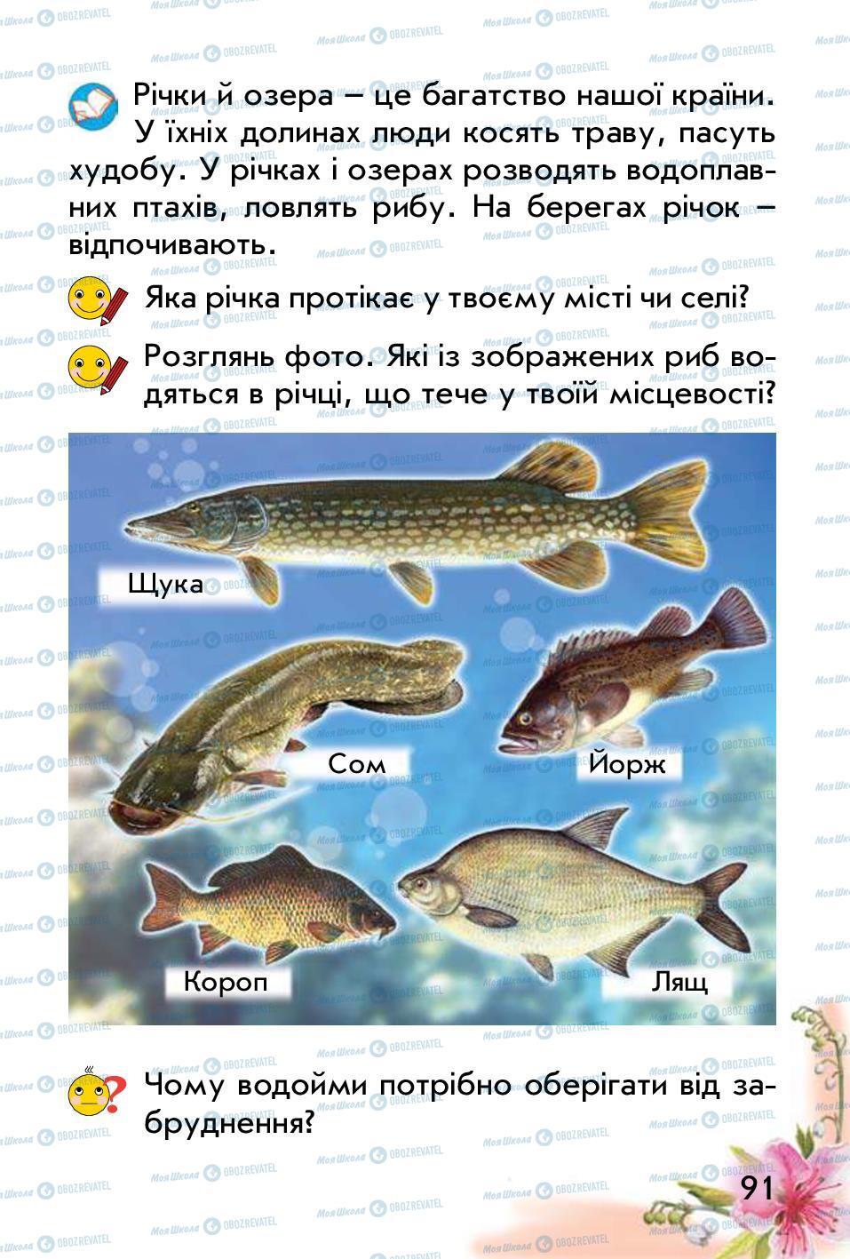 Підручники Природознавство 1 клас сторінка 91