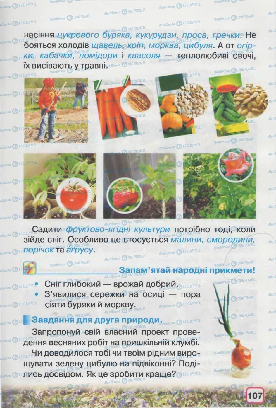 Підручники Природознавство 2 клас сторінка 107