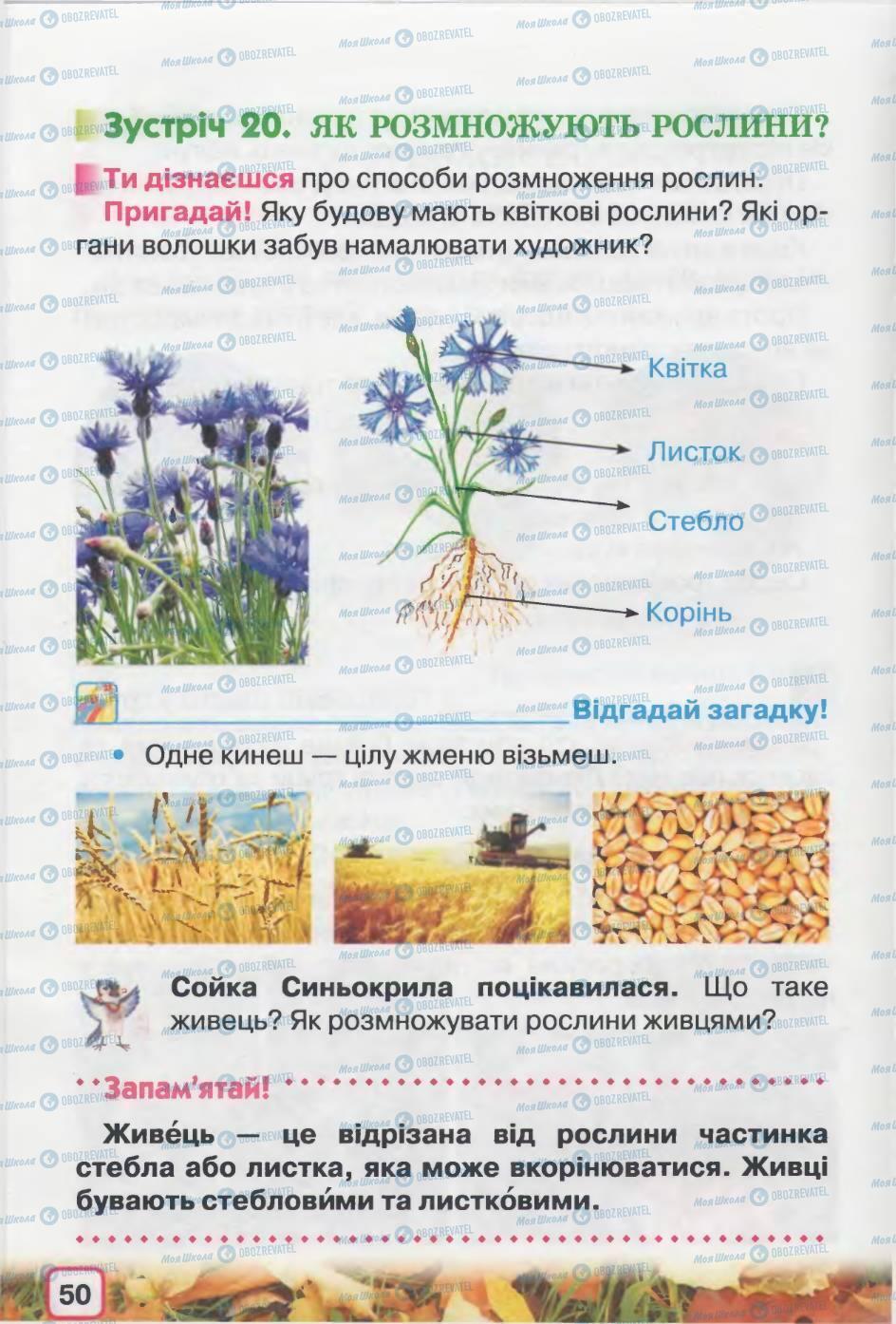 Підручники Природознавство 2 клас сторінка 50