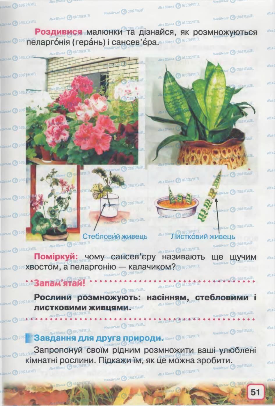 Підручники Природознавство 2 клас сторінка 51
