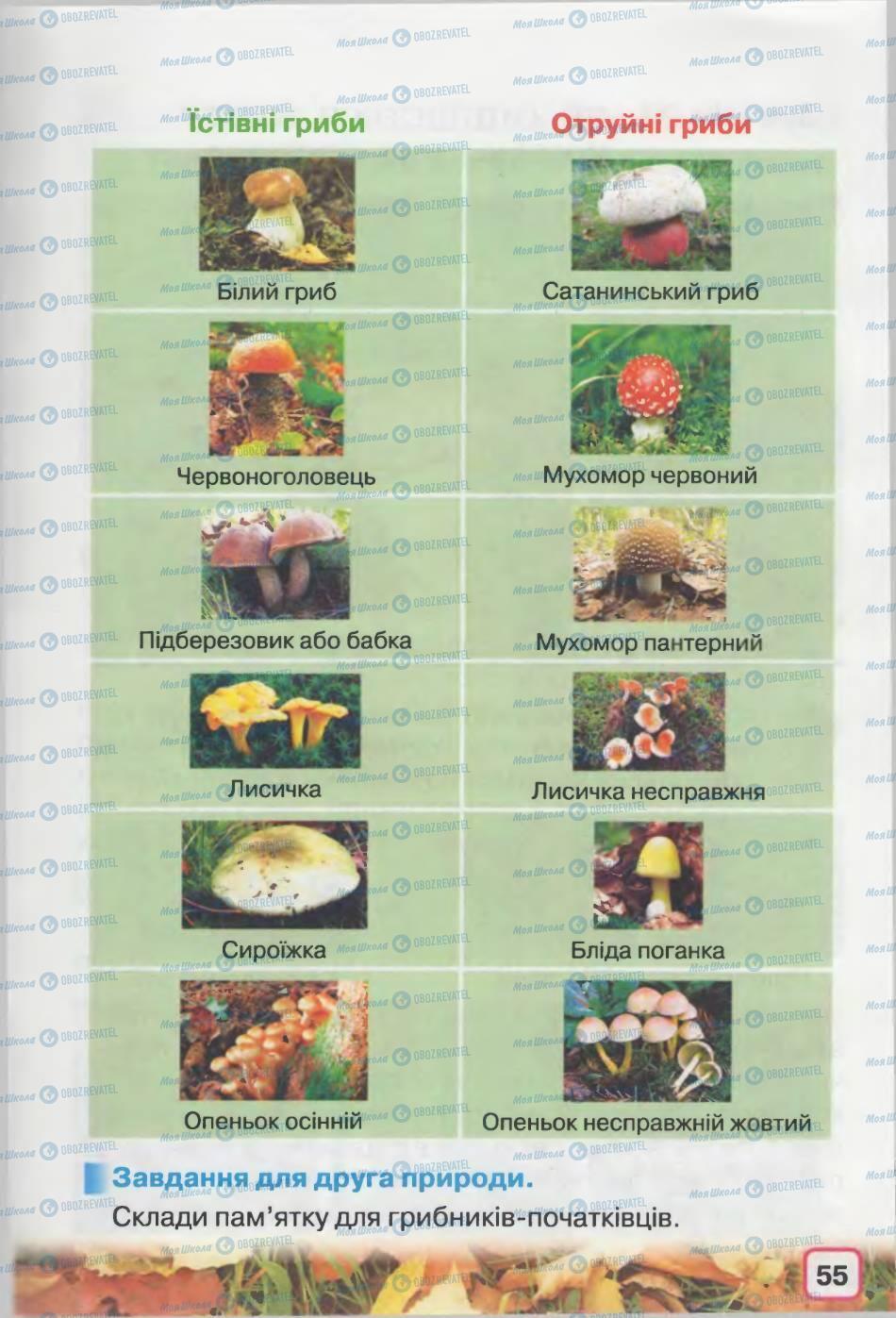 Учебники Природоведение 2 класс страница 55