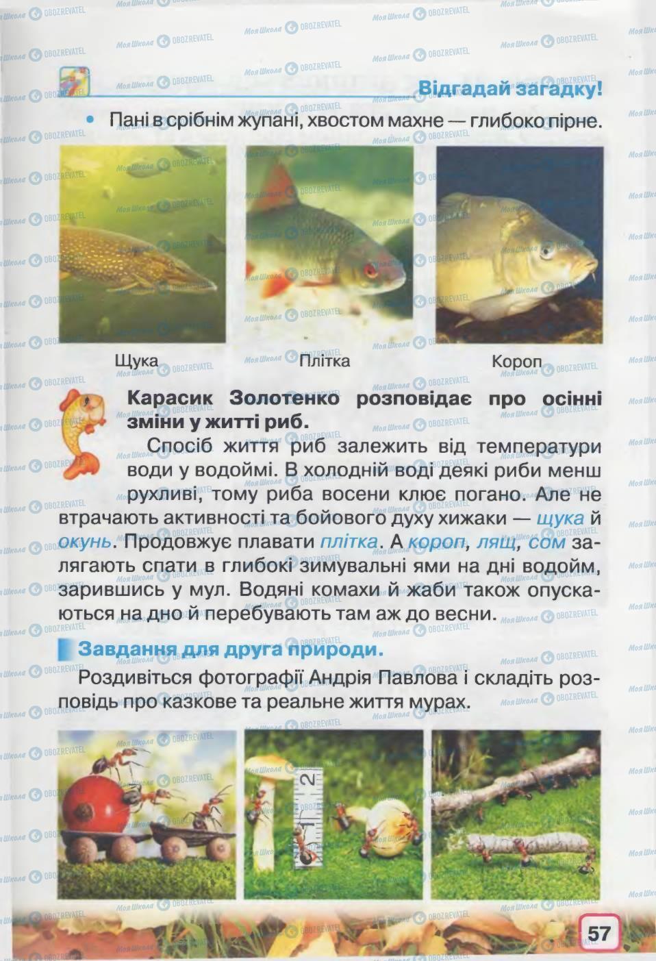 Підручники Природознавство 2 клас сторінка 57