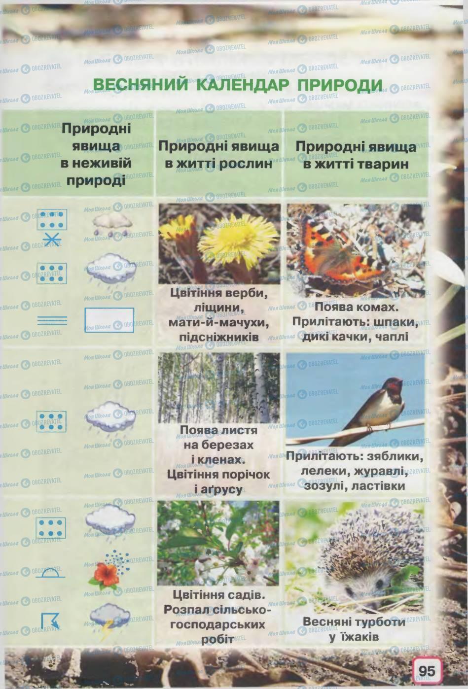 Підручники Природознавство 2 клас сторінка 95