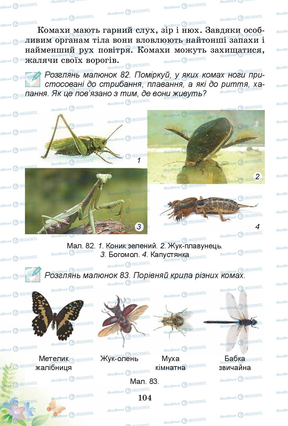 Підручники Природознавство 3 клас сторінка 104