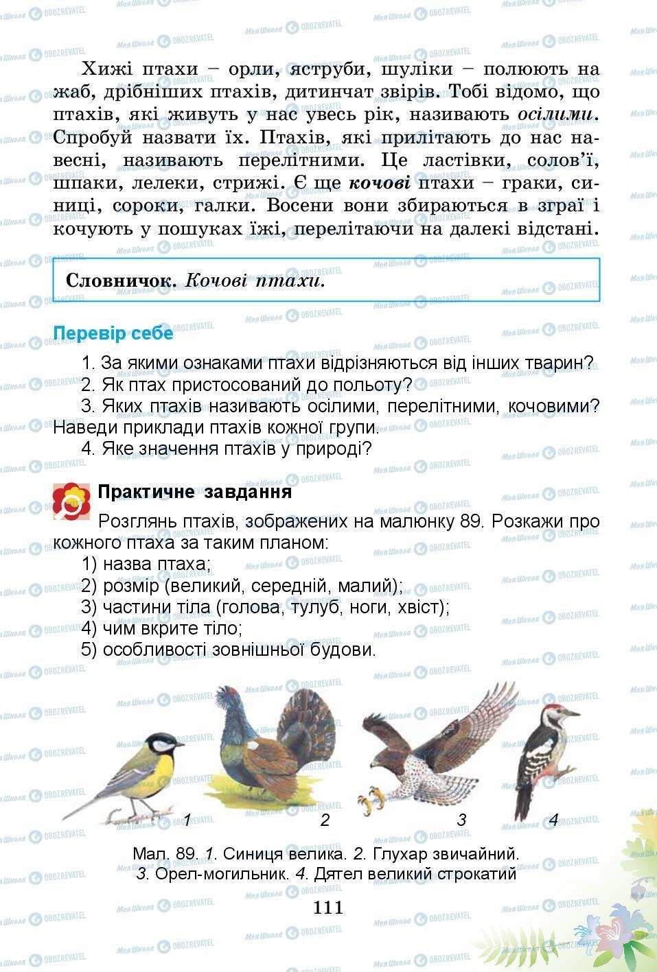 Підручники Природознавство 3 клас сторінка 111