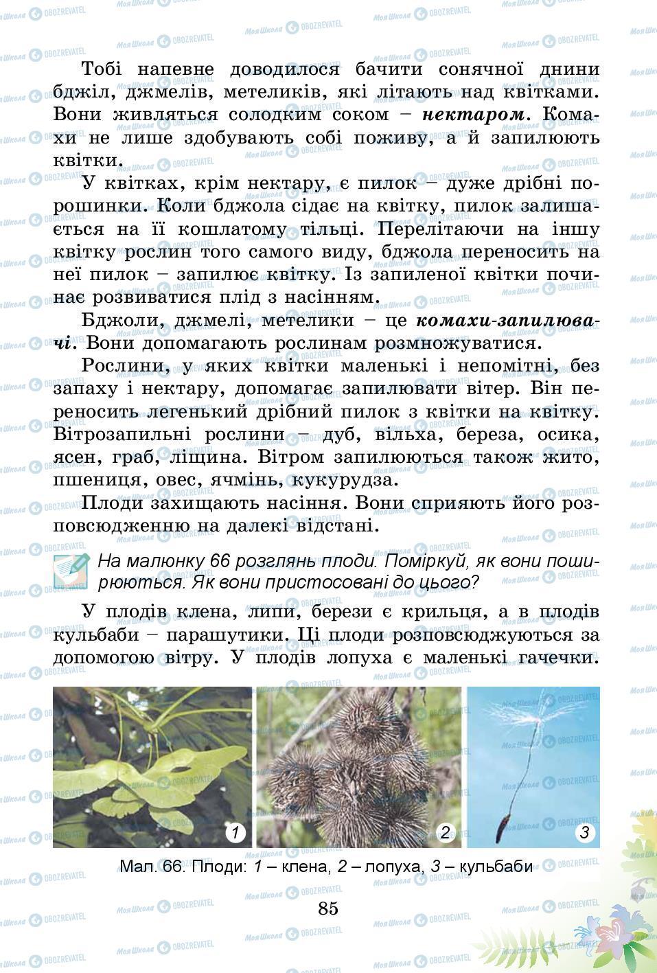 Підручники Природознавство 3 клас сторінка 85