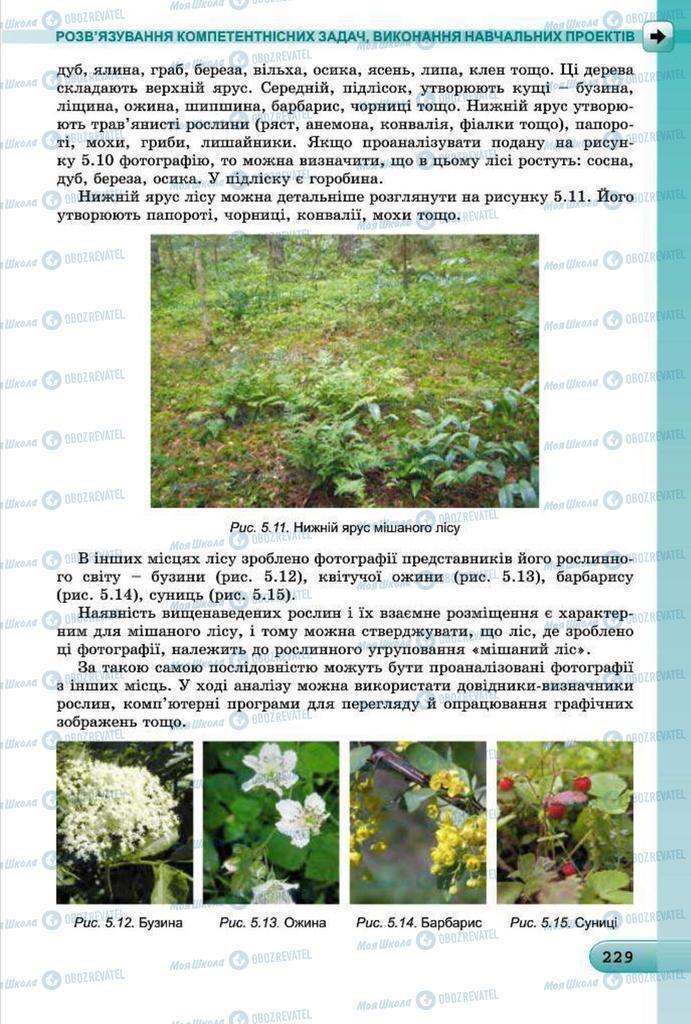 Підручники Інформатика 7 клас сторінка 229