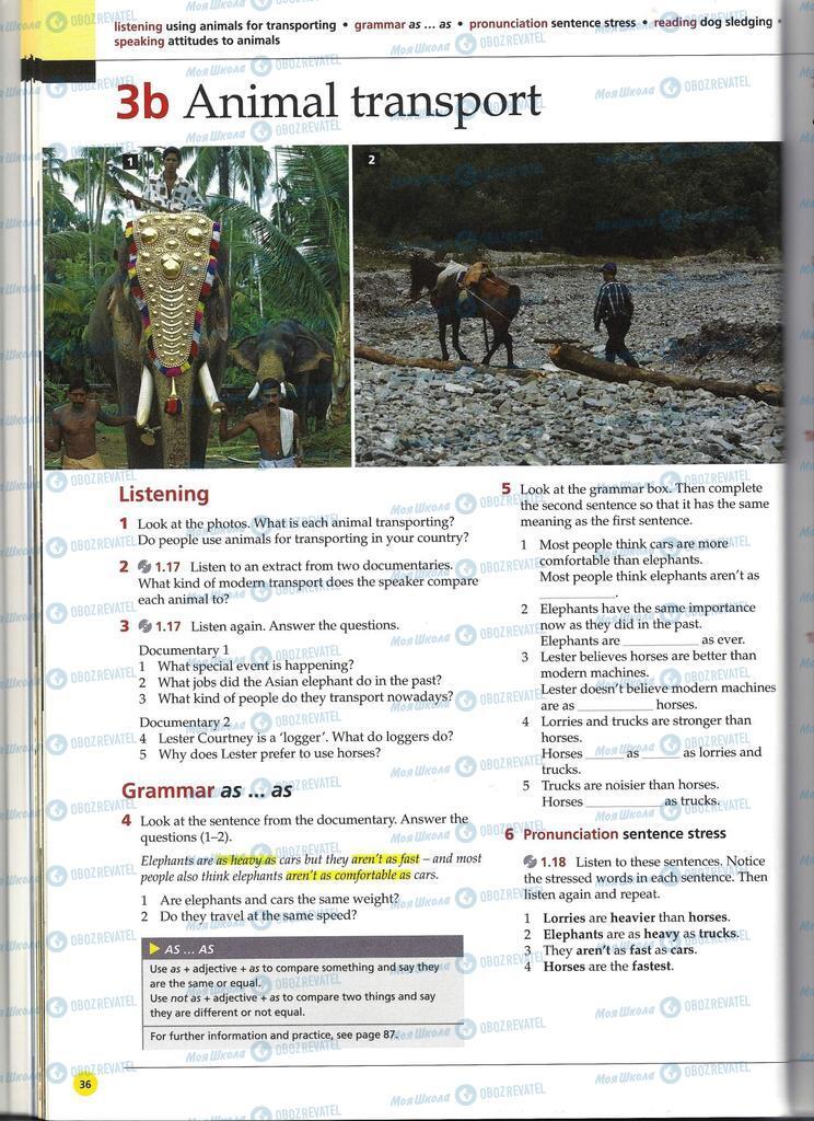 Підручники Англійська мова 11 клас сторінка 36