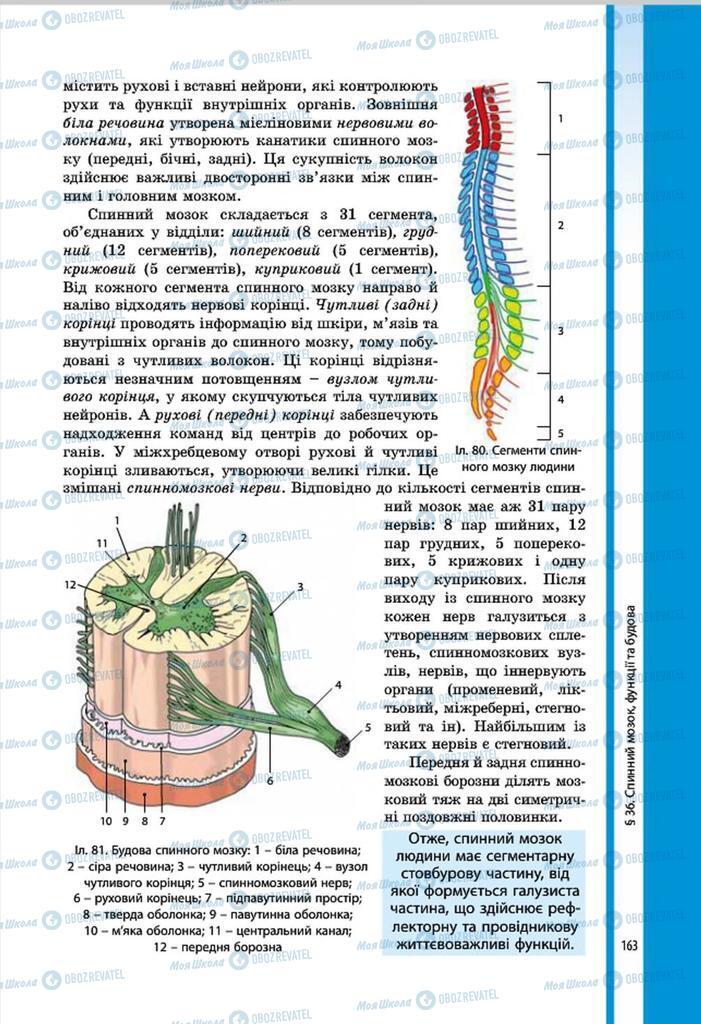 Підручники Біологія 8 клас сторінка 163
