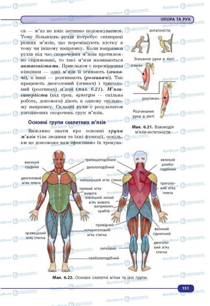 Учебники Биология 8 класс страница 151