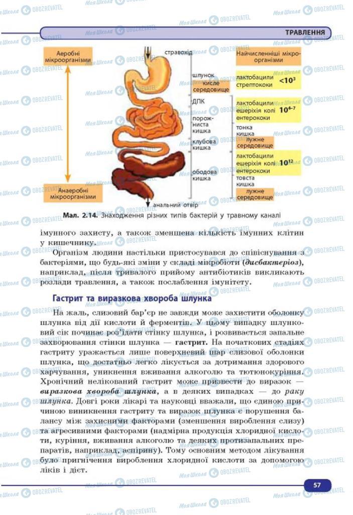Учебники Биология 8 класс страница 57